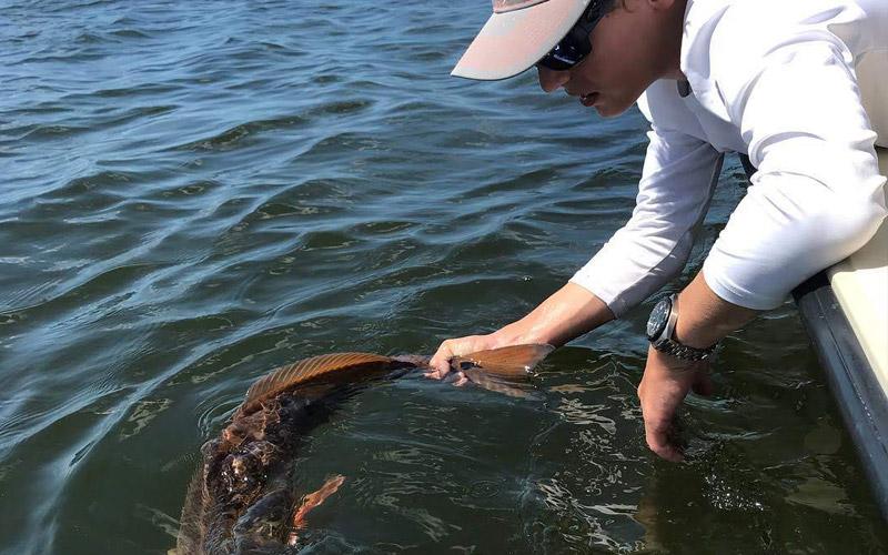 saltwater lures inshore fishing